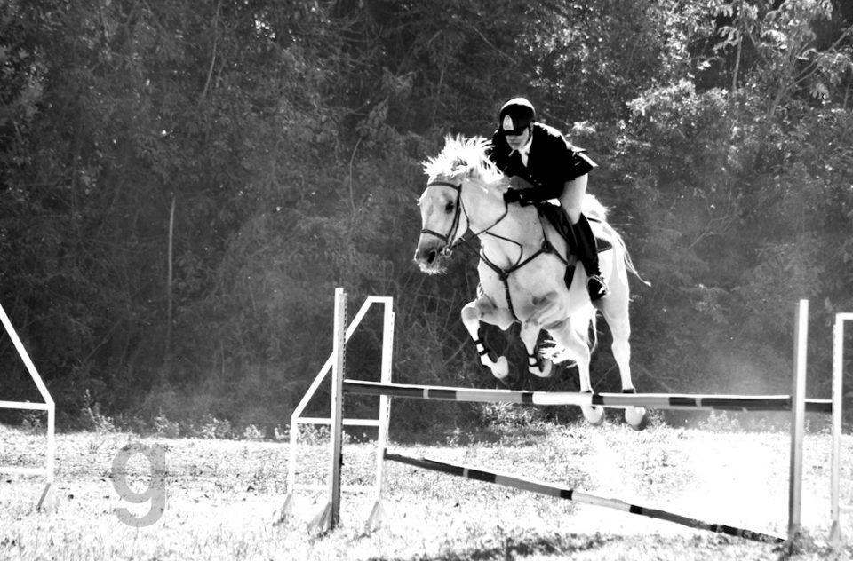 Equestrianism I Hipismo
